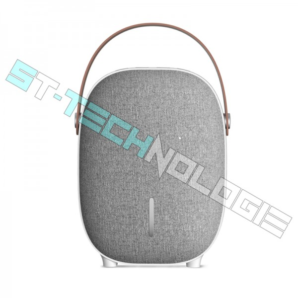 Enceinte Bluetooth/ Radio FM/ Micro SD...